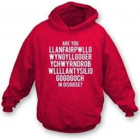 Are You Llanfairpwllgwyngyll In Disguise? (Wrexham) Hooded Sweatshirt