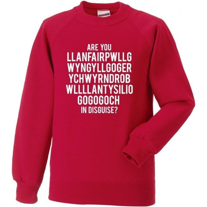 Are You Llanfairpwllgwyngyll In Disguise? (Wrexham) Sweatshirt