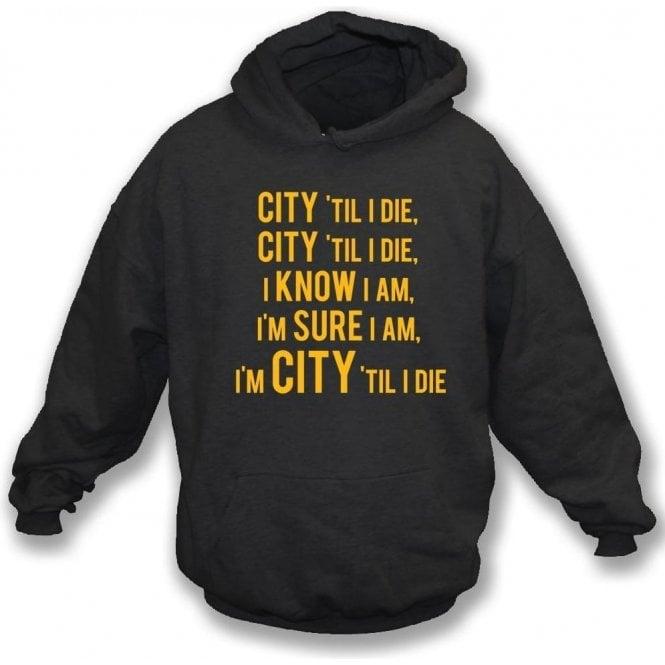 City 'Til I Die Kids Hooded Sweatshirt (Hull City)