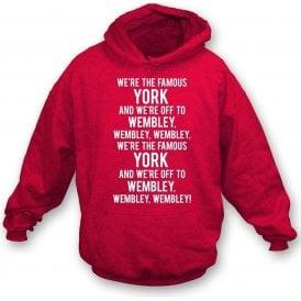 We're The Famous York Kids Hooded Sweatshirt